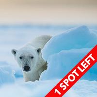 svalbard arctic expedition june 2016