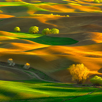 The palouse june 2016