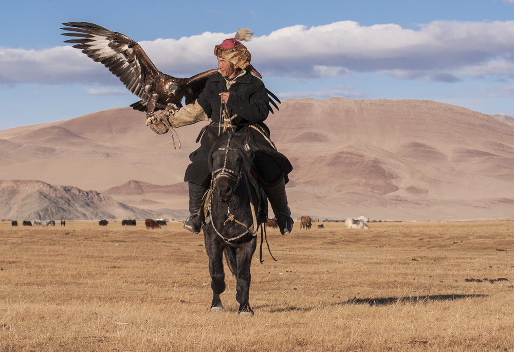 eagle hunter on horseback.jpg