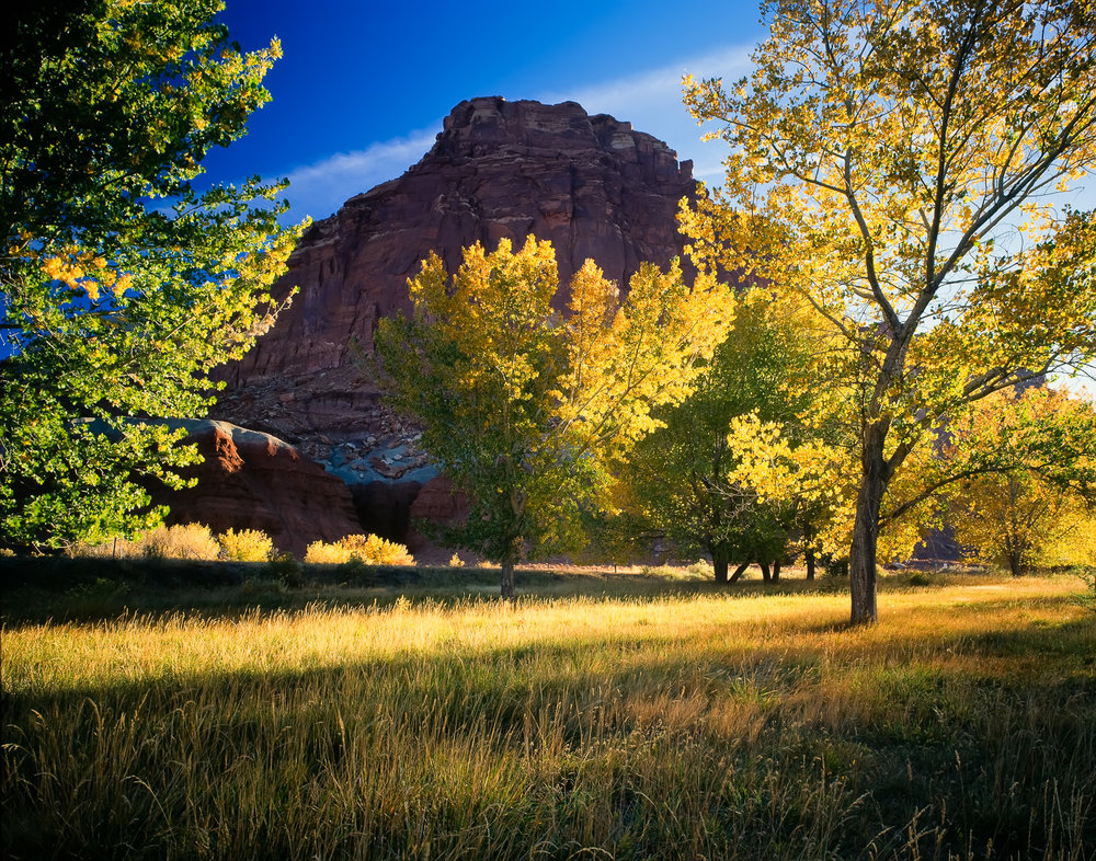 Autumn, Capitol Reef National Park