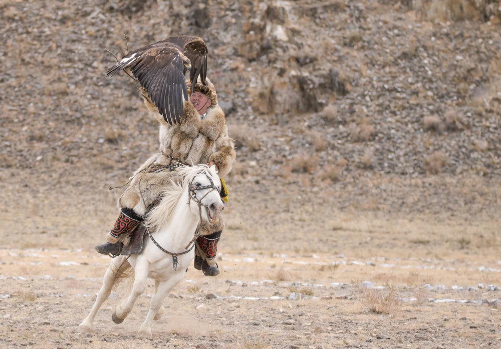 catching the eagle while on horseback.jpg