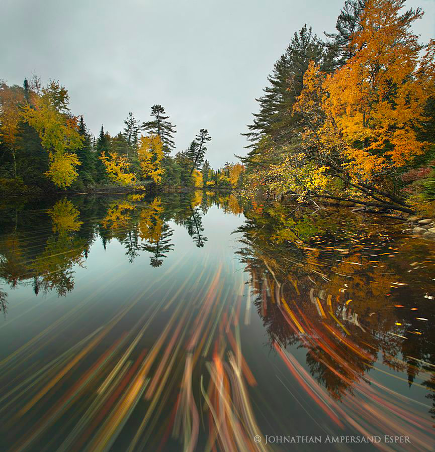 Raquette-River-near-Tupper-Lake-streaming-leaves_700px (1).jpg