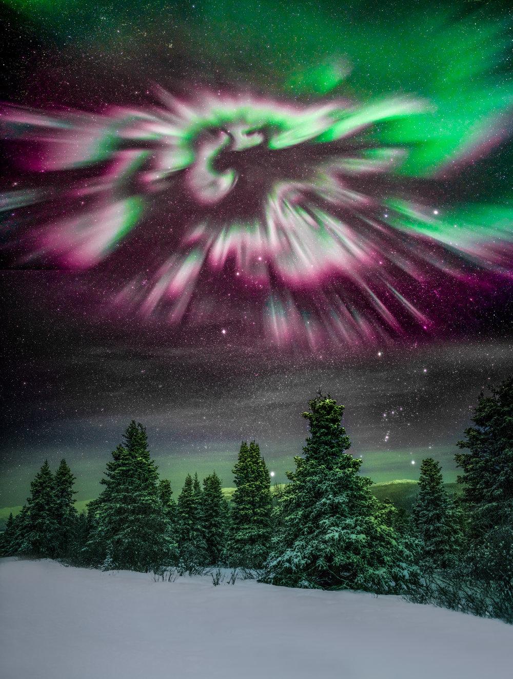 DSC03479cloning-stars-Edit.jpg