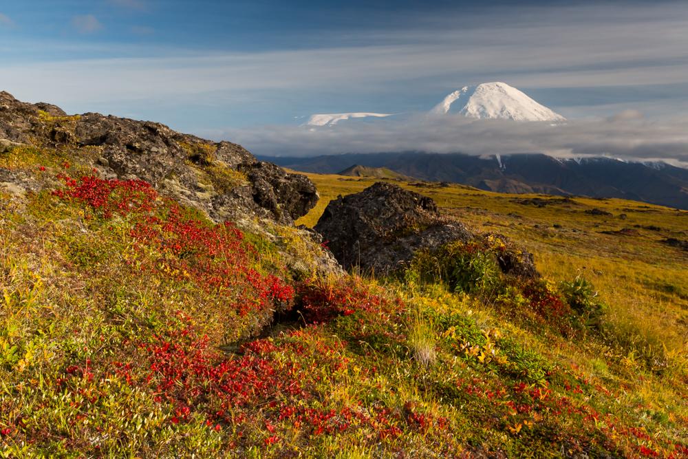 Klyuchevskoy Nature aprk.jpg