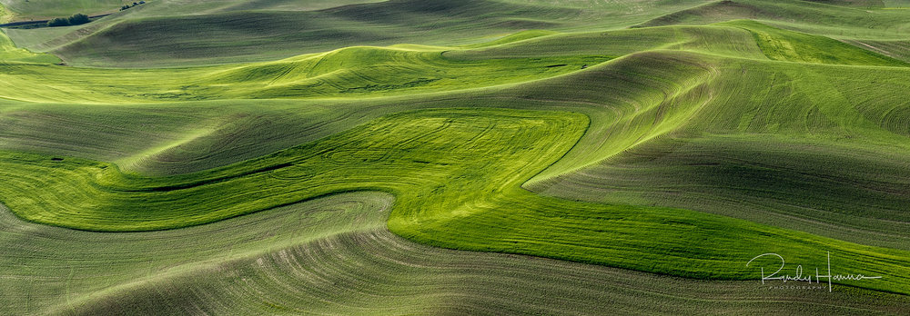 20140620_Palouse_D4_1020-Edit-1.jpg