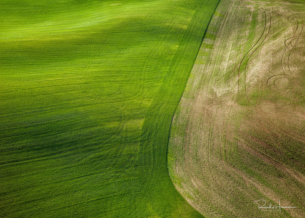 20140620_Palouse_H5D_08398-Edit-2.jpg