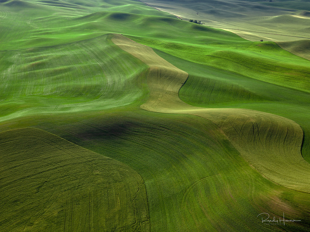 20140620_Palouse_H5D_08400-Edit-2.jpg