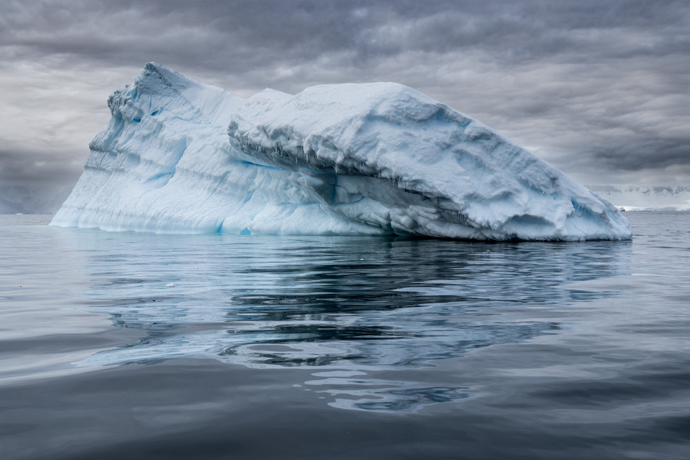 antarctica-photo-workshop.jpg
