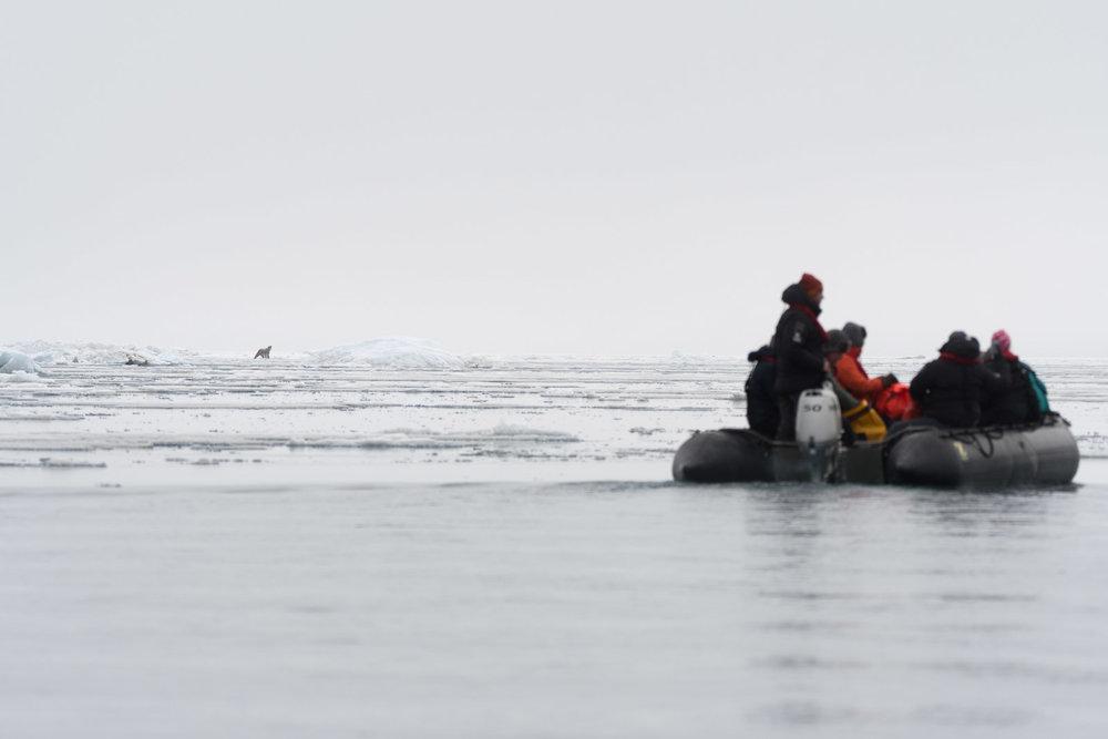 photo-workshop-svalbard-photo-expedition-15.jpg