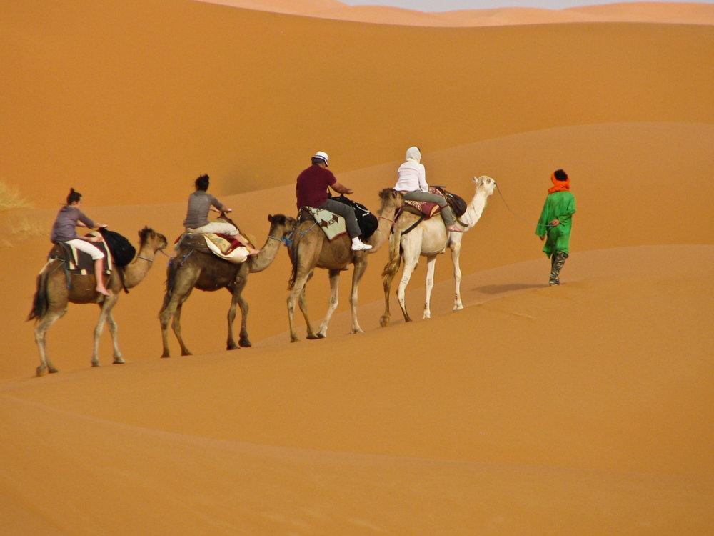 Sahara-claudia family2.jpg