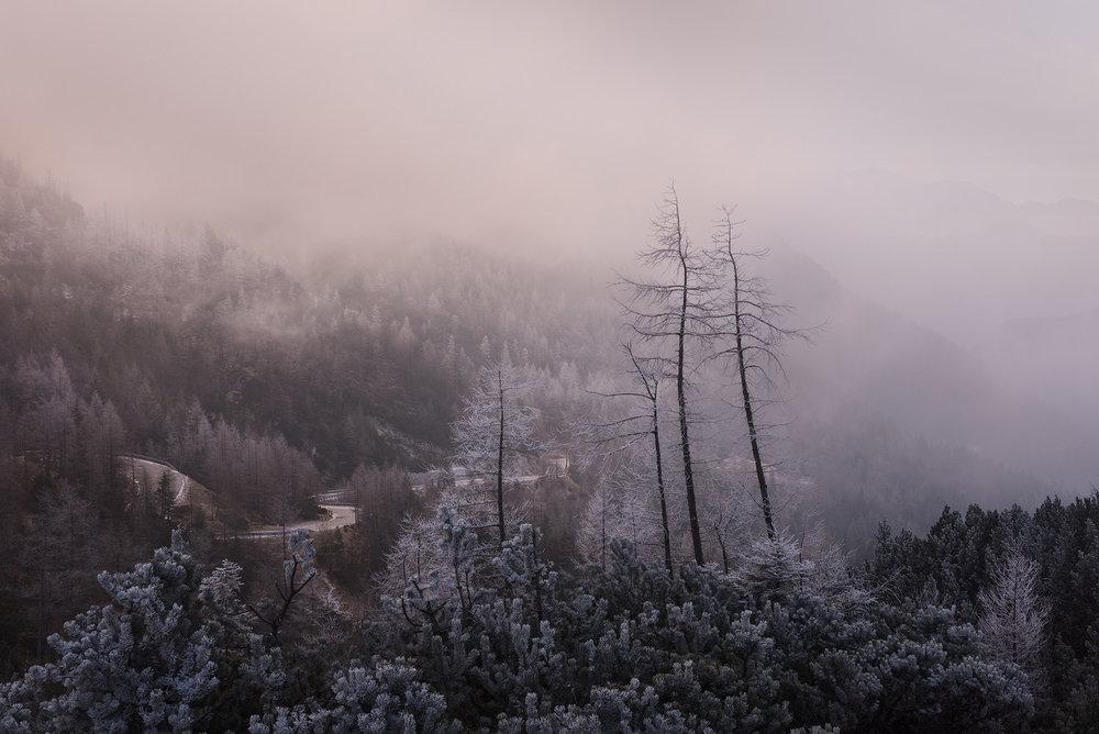 slovenia_winter_esenko_006.jpg
