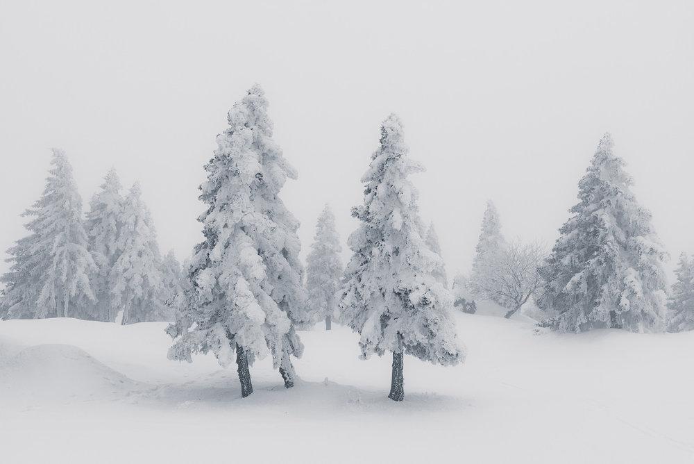 slovenia_winter_esenko_008.jpg