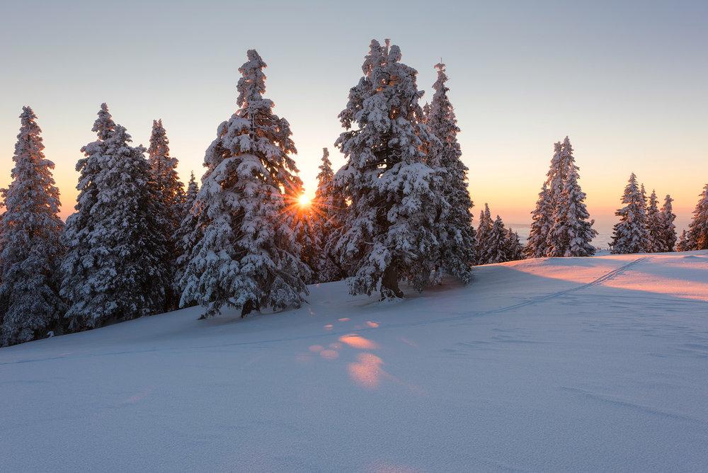 slovenia_winter_esenko_010.jpg
