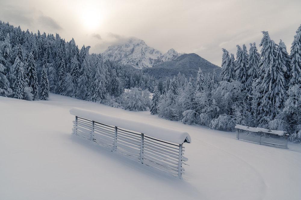 slovenia_winter_esenko_017.jpg