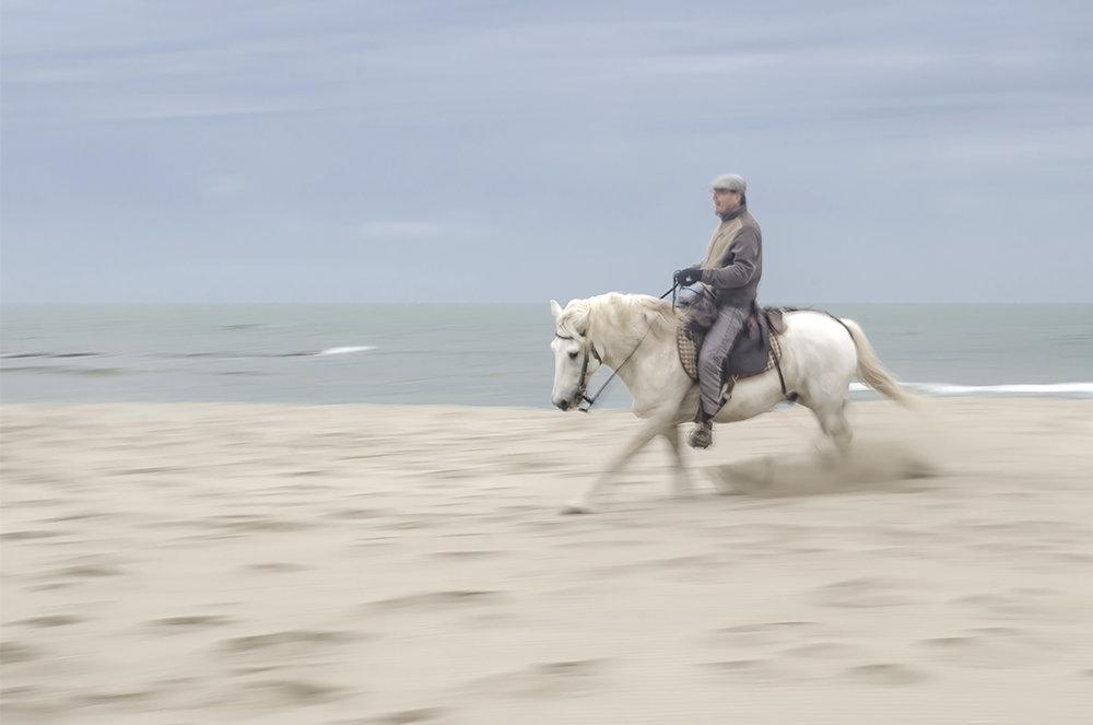 running the horses.jpg