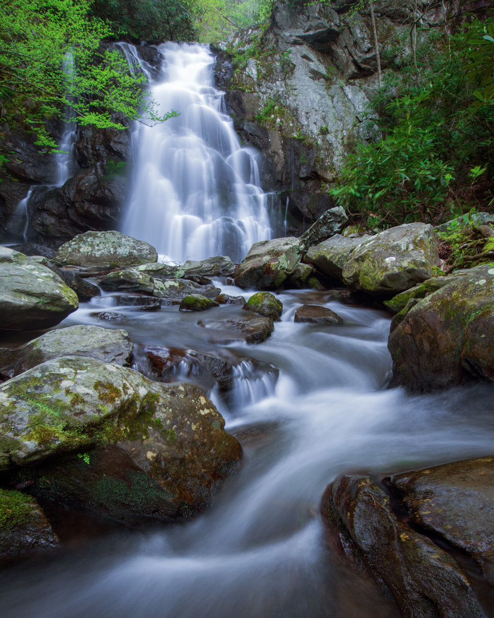 Spuce Flats Falls in spring, Great Smoky Mountains National Park, Tennessee