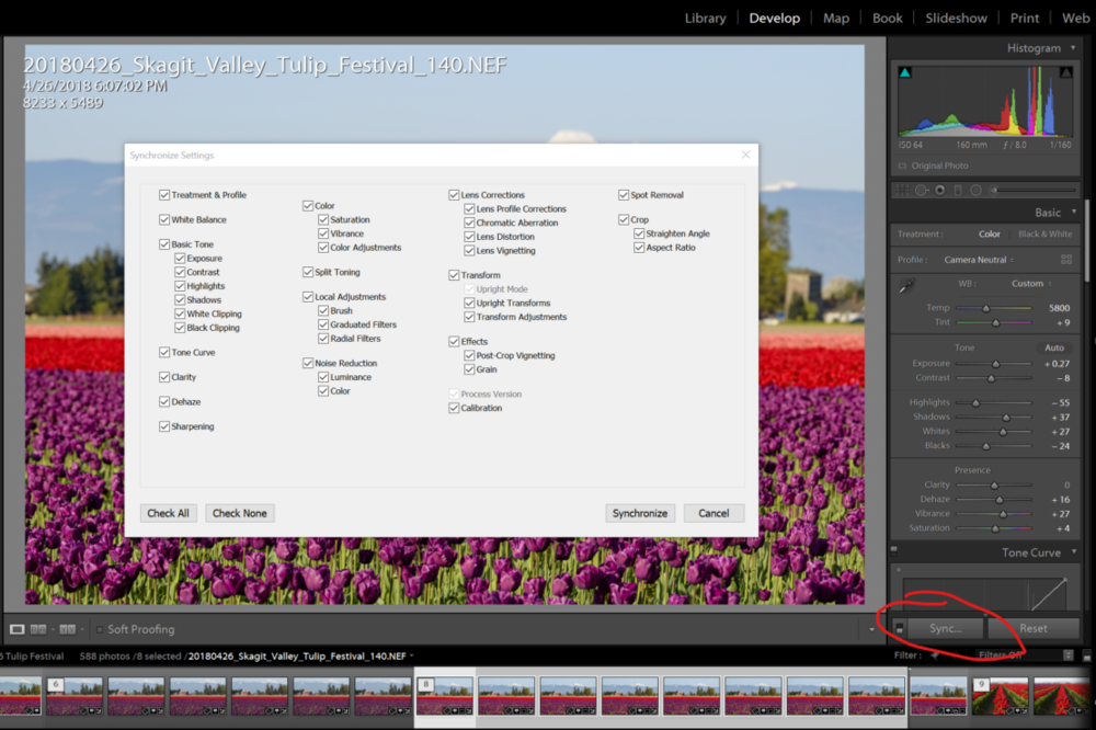 Synchronize edits in Lightroom before blending focus-stacked images.