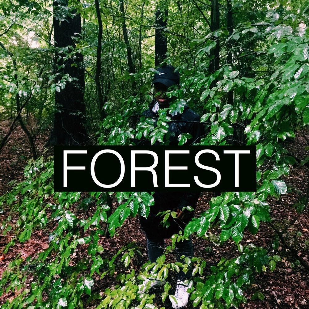Forest - Artwork .jpg