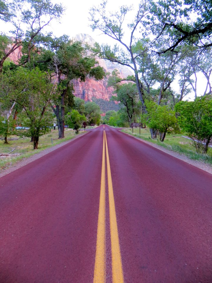 The road to Zion.