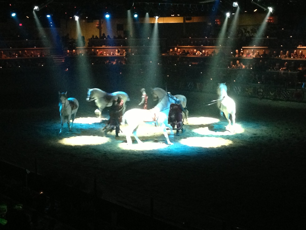 One of the better parts of the show, were the Spanish Dancing horses.