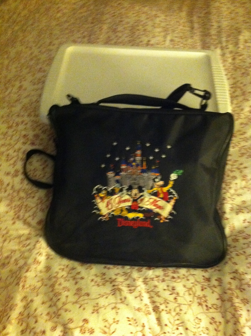 My pin bag and a plastic container full of pins = My Shameful Past