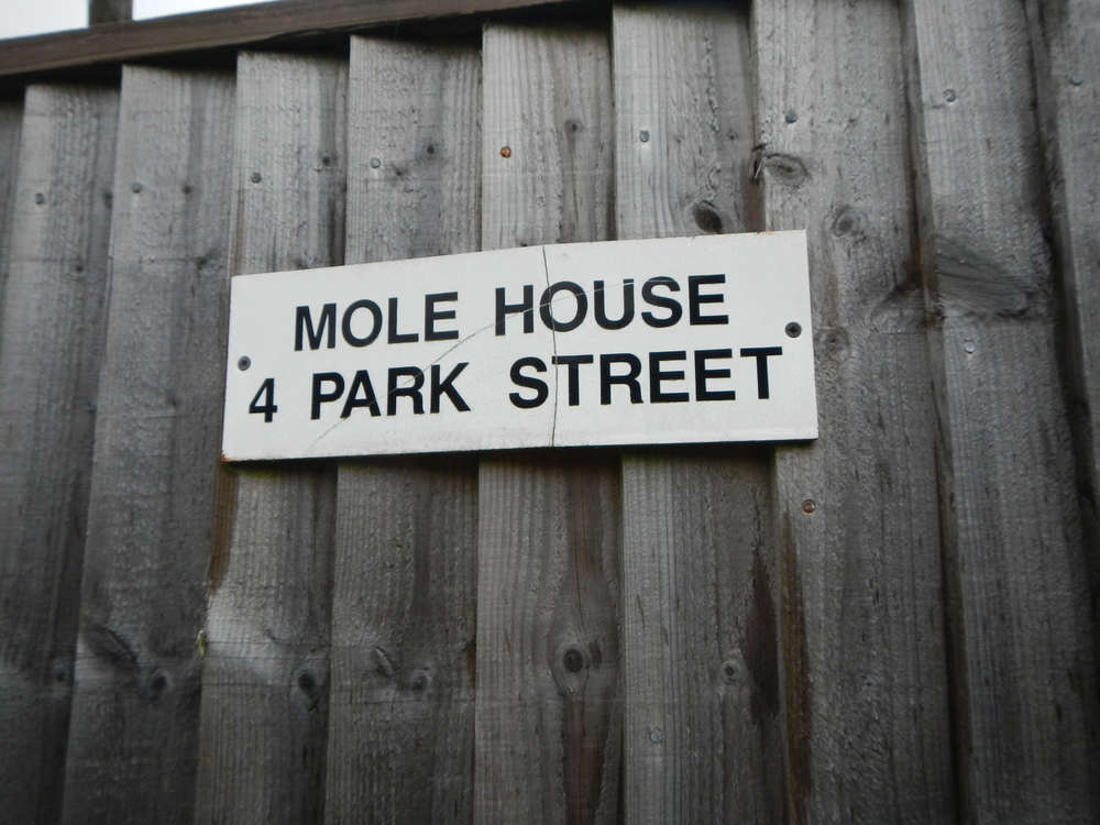 "i want to live in ""Mole House"". I also learned all about mole holes on this trip."