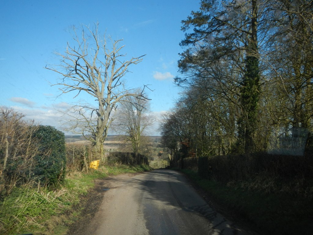 The road to the farm.
