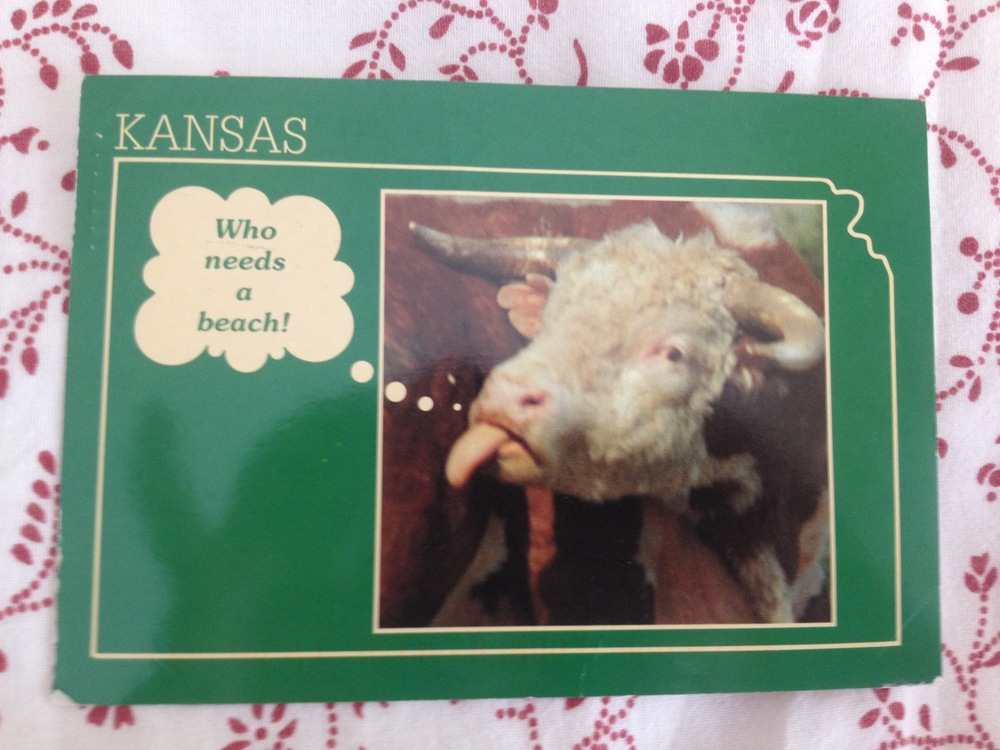 This one is from a close family friend who knows that I love cows!