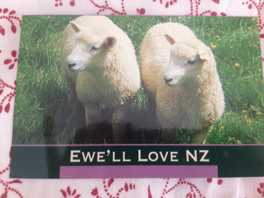 My all time favorite postcard from my friend Fanny. First, the cute ewes. Second, the funny phrasing. Third, because my friend (and neighbor) went to New Zealand when we were kids and I didn't know where she had gone until the postcard came in the mail!