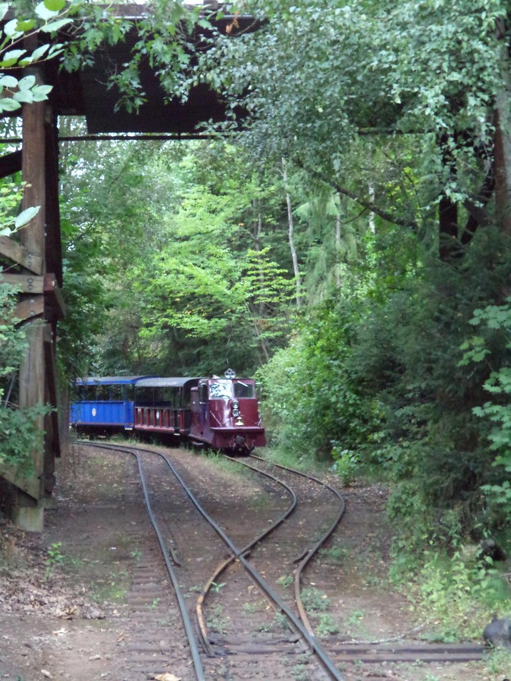 The Oregon Zoo train
