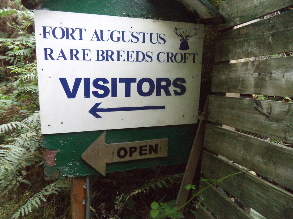 Before going here, I didn't realize that a croft was an animal enclosure. Yippee for new vocabulary words!