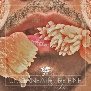 Toro Y Moi   Underneath the Pine   Capark; 2011