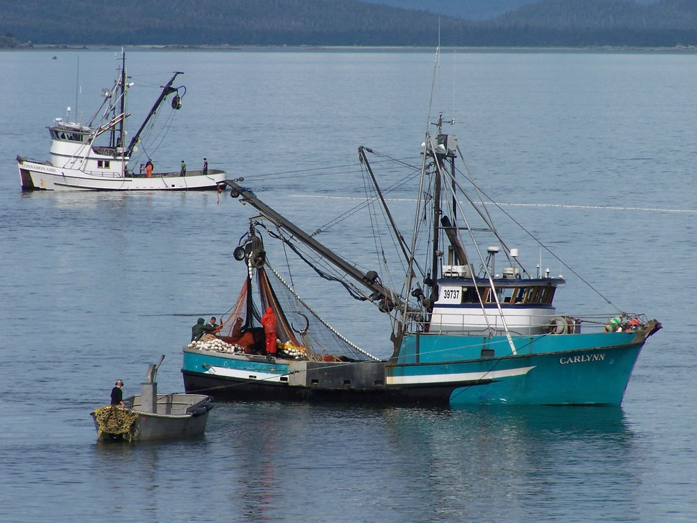 Commercial fishing near the Shrine of St. Therese.