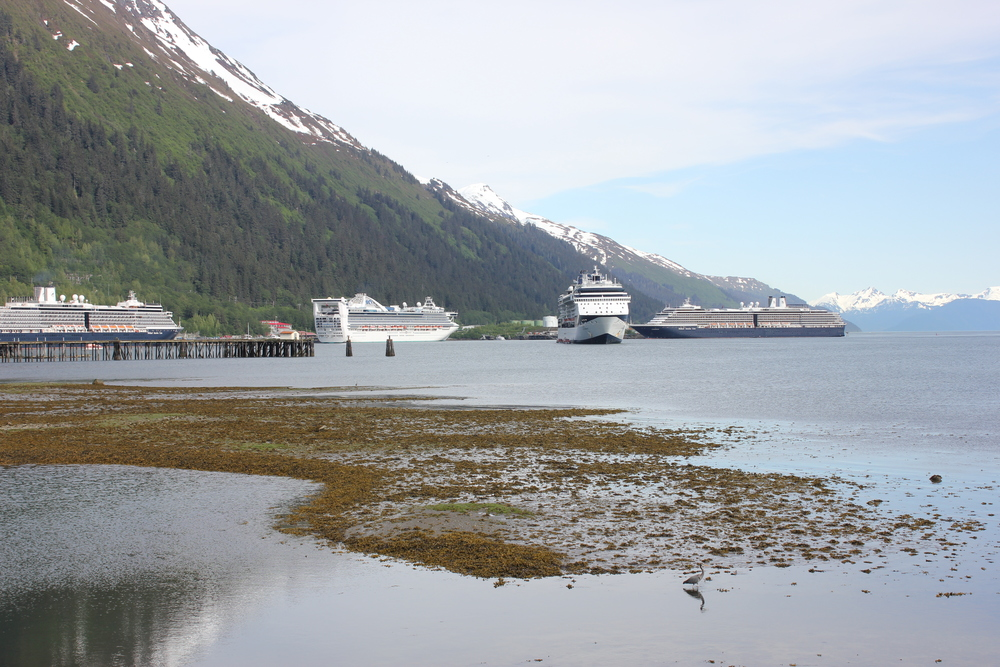 Summer 2012 was a busy cruise ship season for Juneau.