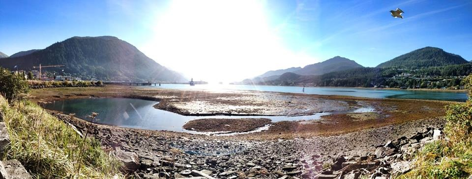 Panorama of the Gastineau Channel.  That's a bird, not a floatplane.