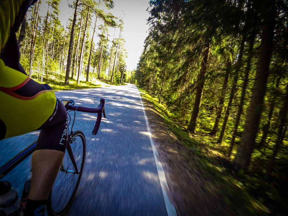 Speeding through the forests