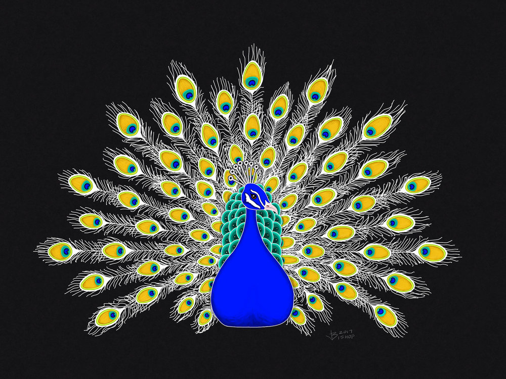 Peacock #lineaapp