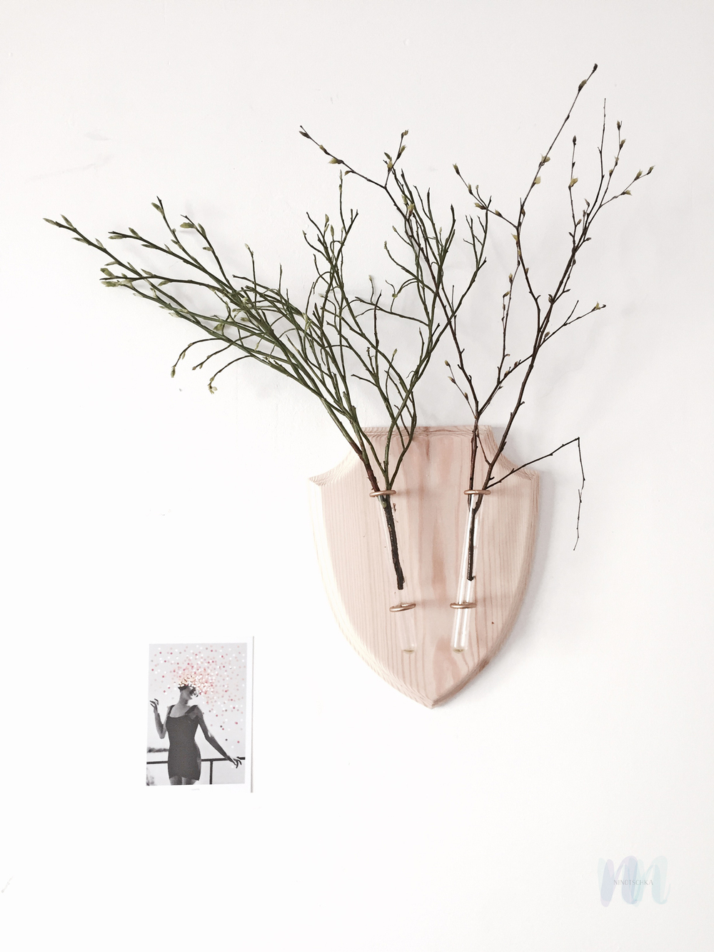 beautiful wall plant hanger by ecodeer