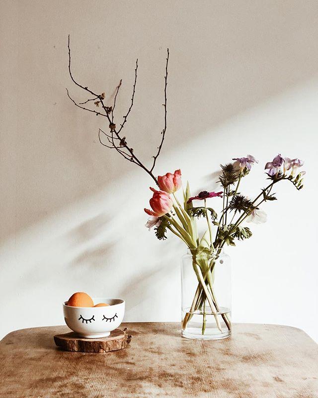 | zzZz | wir wollen hier nicht so richtig aus dem winterschlaf erwachen. obwohl sogar langsam die ersten frühlingsblumen einziehen dürfen. die nächste erkältungsrunde hat uns schon wieder  im griff, also werden nun fleißig vitamine gefuttert um wieder zu kräften zu kommen. besonders wirksam klappt das mit der neuen lieblingsschüssel von @odernichtoderdoch.de 🥝🌿 schnief! [werbung] #odernichtoderdoch #werbung #zuhausebeininotschka