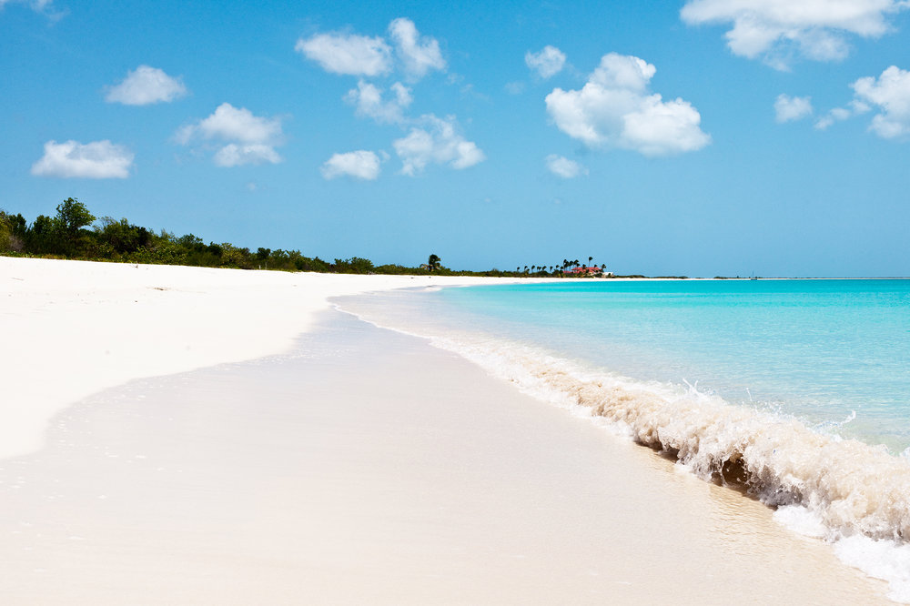 Beach in Barbuda.jpg