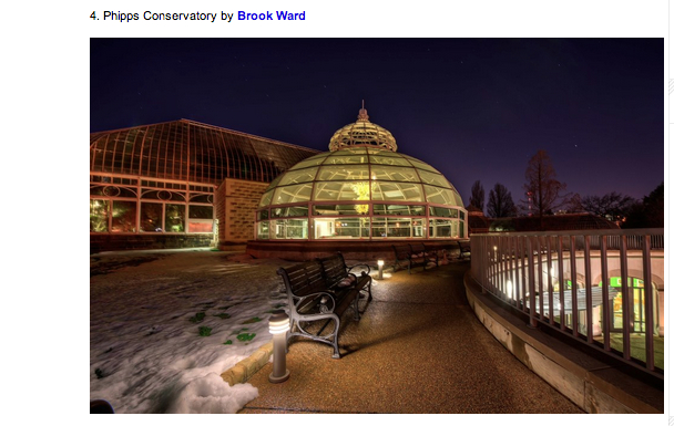 Here is my picture of Phipps Conservatory that was selected as part of the top five photos.