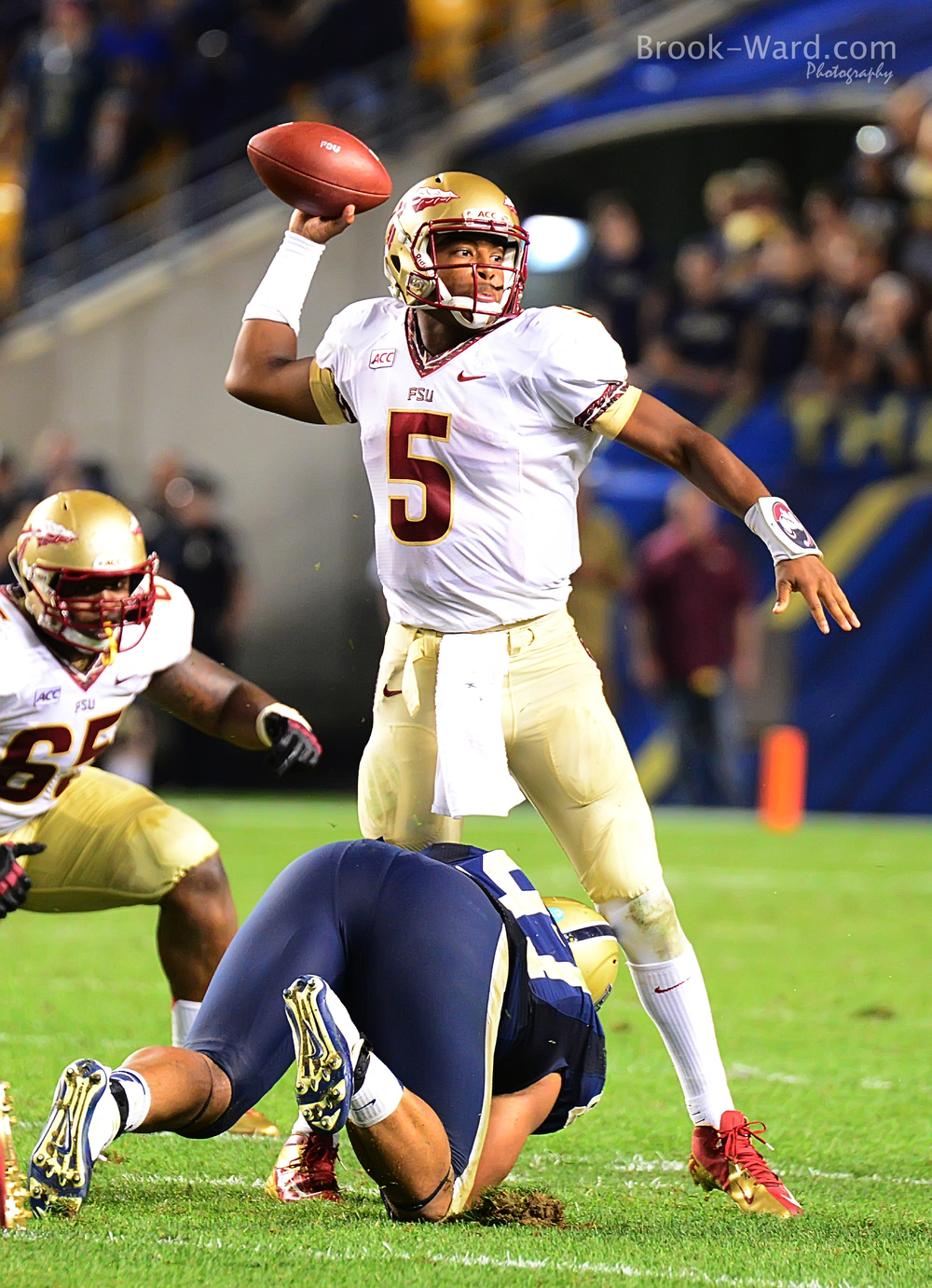 24921 Pitt vs FSU Football 2013.JPG