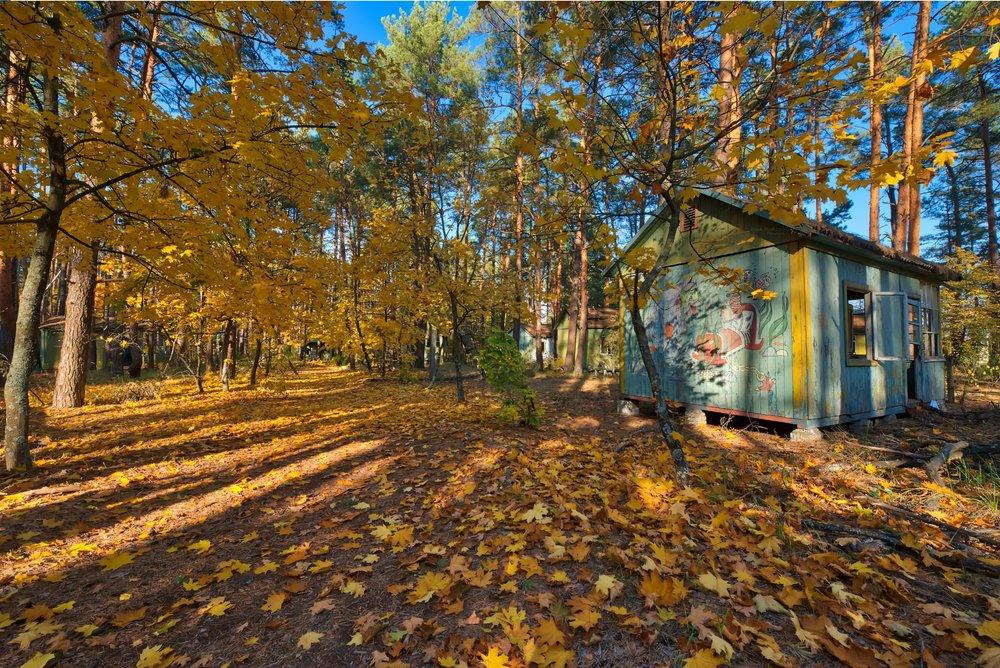 Chernobyl Children's Summer Camp