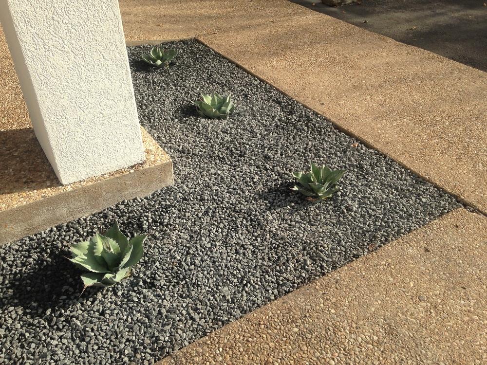 Conundrums of a landscaper series blackstar gravel for Landscaping rocks midland tx