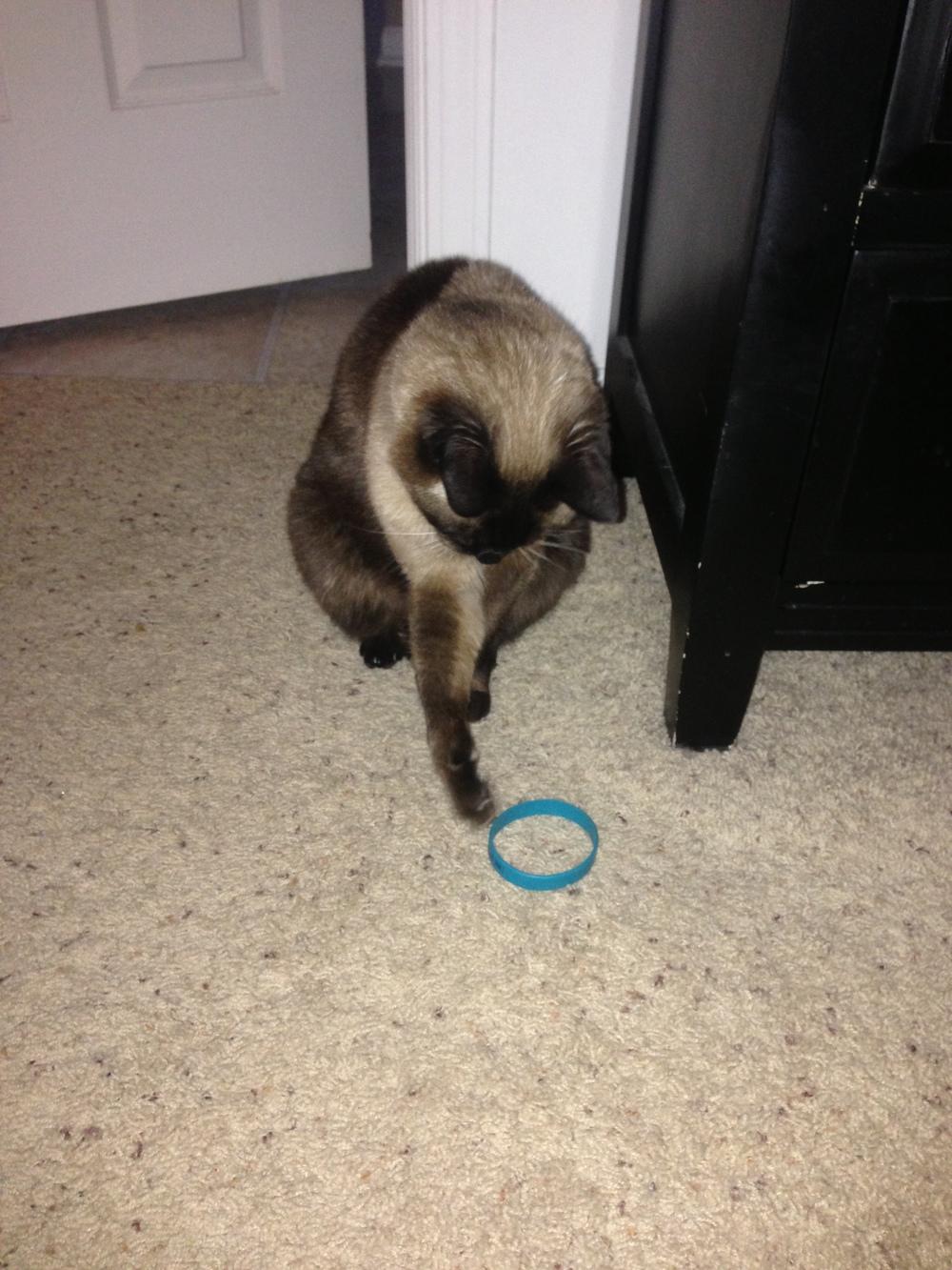 shadow bracelet