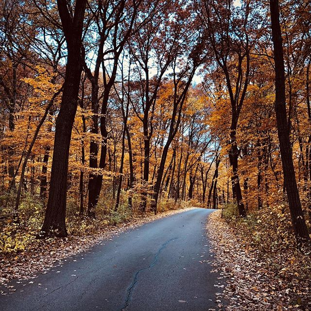 Perfect #fall #road for #bicycling