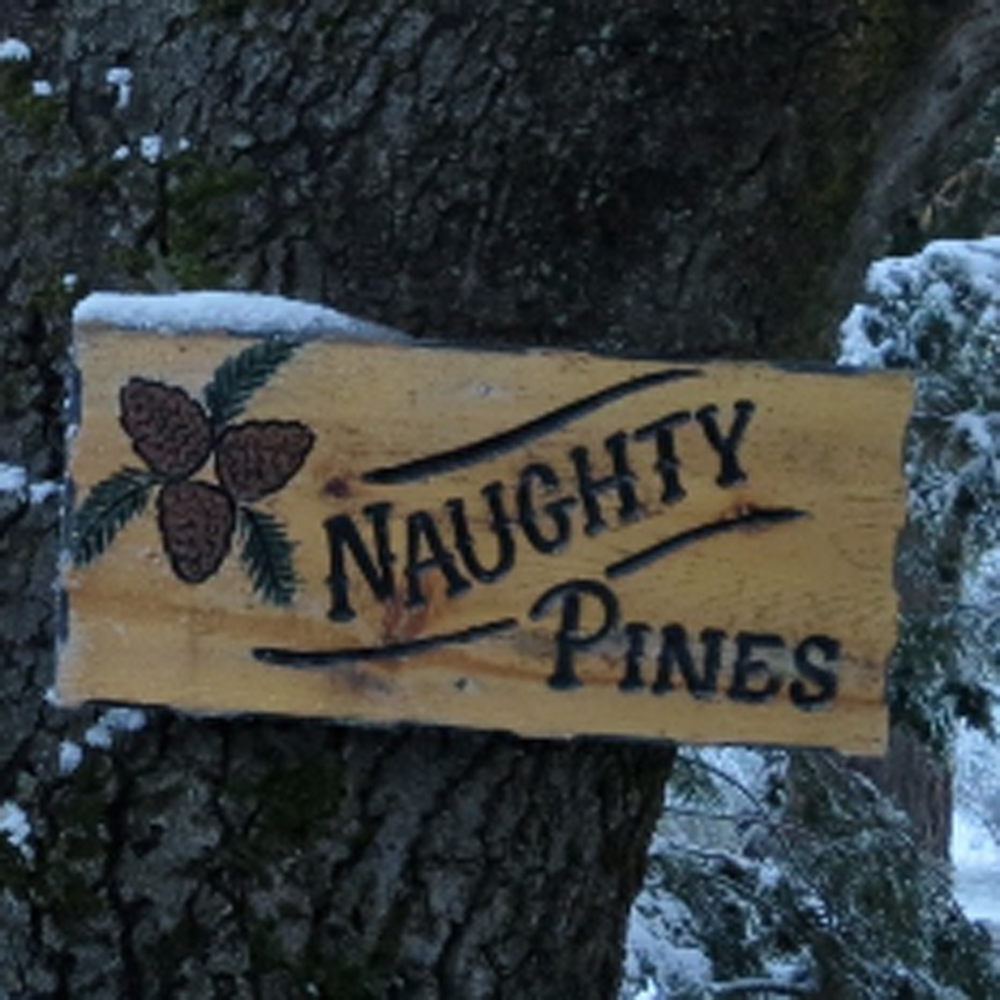 Naughty Pines LOGO.jpg