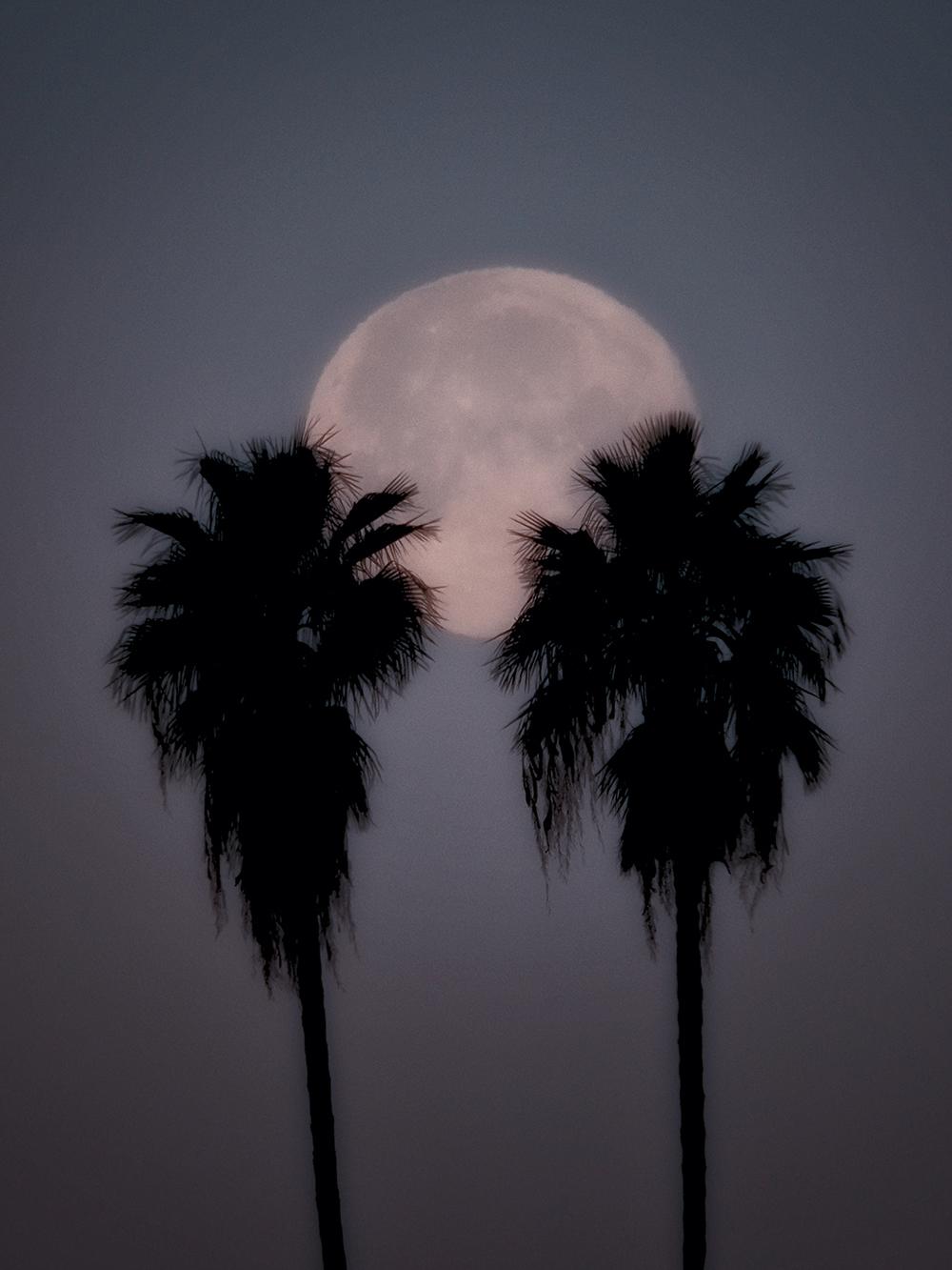 Holding the Moon.jpg