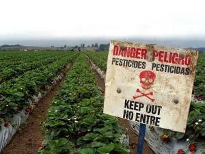 Danger-Pesticide-sign-300x225.jpg