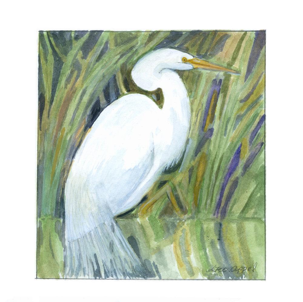 Geo Appel White Stork.jpg